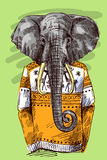 Elephant in knitted sweater. Vector illustration for greeting card, poster, or print on clothes. Fashion Style drawing. Hipster Stock Images