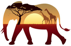 Elephant Landscape. African landscape in silhouette of elephant. No transparency used. Basic (linear) gradients used Stock Photos