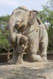 Elephant lifting Warrior Stock Image
