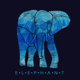 Elephant - line border and Blue low poly vector Design Stock Images