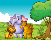 An elephant, a lion and a bear near the tree Stock Image
