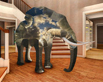 Elephant in the living room 3d rendering Stock Images