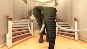 Elephant in the living room 3d rendering Royalty Free Stock Image