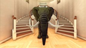 Elephant in the living room 3d rendering Royalty Free Stock Photo