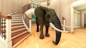 Elephant in the living room 3d rendering Royalty Free Stock Photos