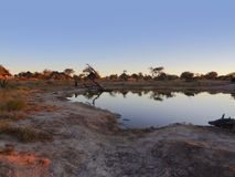 Elephant Lodge in Botswana Royalty Free Stock Photos