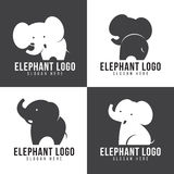 Elephant logo - cute elephant 4 style and gray and white tone Stock Photos
