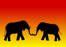 Elephant love Royalty Free Stock Photos