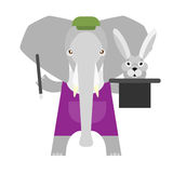 Elephant magician Royalty Free Stock Photography