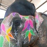 Elephant make-up head. Royalty Free Stock Photo