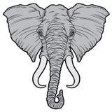 Elephant, mammoth Stock Image