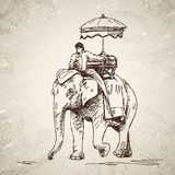 Elephant with man and umbrella Stock Photography