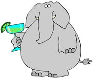 Elephant with a Margarita. This illustration depicts an elephant holding a large Margarita Royalty Free Stock Images