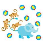 Elephant Monkey Play Stock Photos
