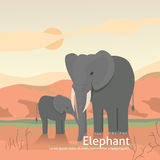 Elephant mother and calf cartoon illustration. africa illustration. Eps10 eps10 Stock Photo
