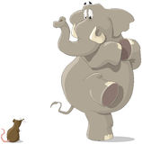 The elephant and the mouse. The elephant was frightened of a small mousy Royalty Free Stock Photo