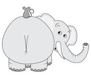 Elephant and mouse Royalty Free Stock Photo