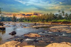 Elephant attraction river landscape of the jungle sunrise Sri La. Elephant nature attraction river, Pinnawala elephant orphanage, Sri Lanka landscape of the Stock Photography