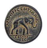 Elephant on old roman coin Royalty Free Stock Photos