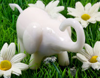 Elephant toy Stock Photo