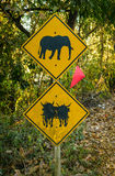 Elephant and Ox warning Royalty Free Stock Images