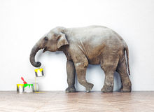 Elephant with paint cans Stock Photo