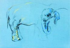 Elephant painting Stock Image