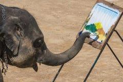 Maesa Elephant Camp, Chiang Mai, Thailand stock photo