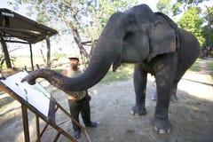 Elephant Painting in Nepal Stock Photos