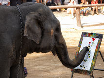Elephant painting a picture in Thailand Royalty Free Stock Photography