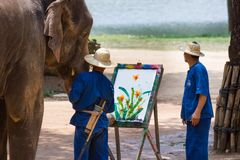 Elephant painting in picture tree frame. LAMPANG, THAILAND - April 13, 2017 :- Elephant painting in picture tree frame at The Thai Elephant Conservation Center royalty free stock image