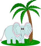 Elephant and the palm Royalty Free Stock Photos