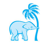 Elephant and palm tree Stock Image
