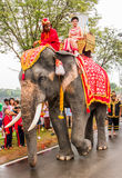 Elephant parade Royalty Free Stock Image