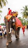 Elephant parade Royalty Free Stock Images