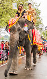 Elephant parade Royalty Free Stock Photography