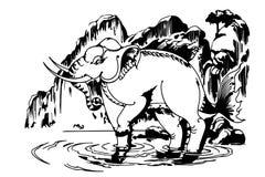 Elephant Pattern Thailand Stock Image