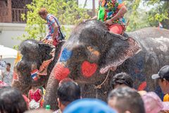 Elephant and peoples are splashing water in Songkran festival royalty free stock image