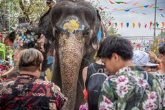 Elephant and peoples are splashing water in Songkran festival stock image