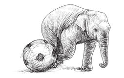 Elephant playing football, sketch free hand draw illustration Stock Photos