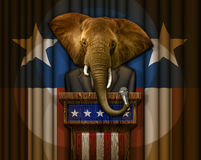 Elephant Politician Standing at a Podium Royalty Free Stock Photo