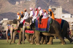 Elephant Polo in Jaipur, Rajasthan, India Stock Photos
