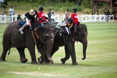 Elephant polo game. stock photo
