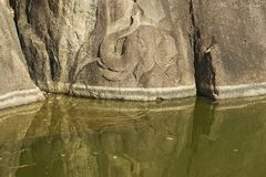Elephant pond carving in Isurumuniya rock temple in  Anuradhapura, Sri Lanka. Royalty Free Stock Photography