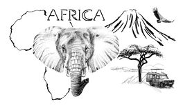 Free Elephant Portrait On Africa Map Background With Kilimanjaro Mountain, Vulture And Car Stock Photos - 168006283