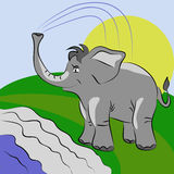 Elephant pouring water Royalty Free Stock Photography