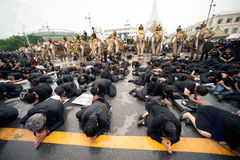 Elephant procession honours late King. Bangkok, Thailand -November 8,2016 : Eleven Elephants to look like white and peoples prostrate ,ascribe unto lamented stock photo