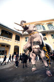 Elephant procession honours late King. Bangkok, Thailand -November 8,2016 : Eleven Elephants to look like white prostrate ,ascribe unto lamented. His Majesty royalty free stock photo