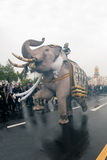Elephant procession honours late King. Bangkok, Thailand -November 8,2016 : Eleven Elephants to look like white prostrate ,ascribe unto lamented. His Majesty royalty free stock photos