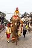 Elephant procession for Lao New Year 2014 in Luang Prabang, Laos Royalty Free Stock Image